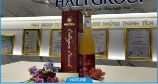 9 Câu hỏi thường gặp khi sử dụng nước uống Hebora Collagen Enrich Nhật Bản